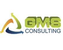GMS Consulting